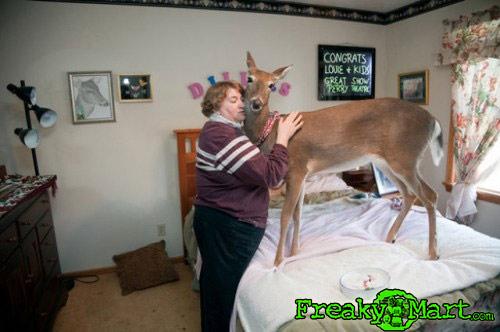 deer_hugger